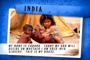 This is my House in India Blue | Shelter The World