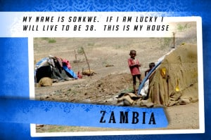 This is MY House in Zambia Blue | 大庇天下
