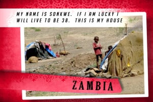 This is MY House in Zambia | 大庇天下